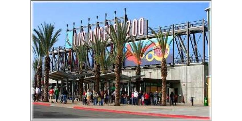 В Лос-Анджелесе появилась необычная карусель