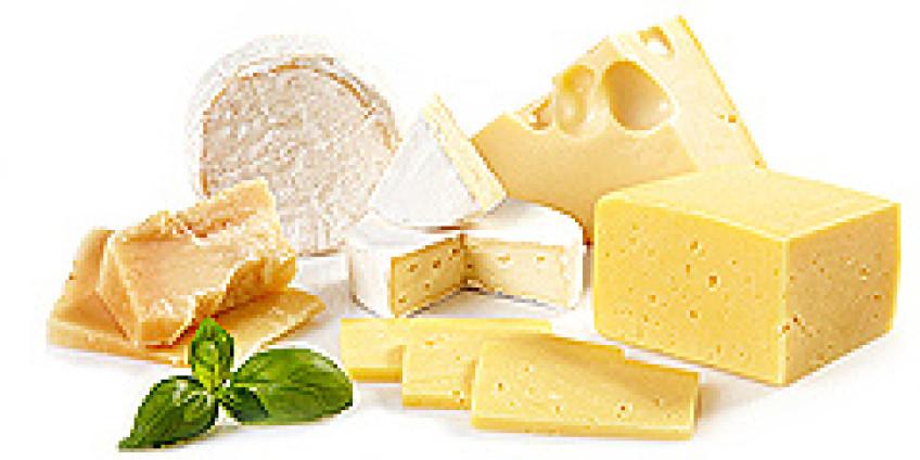 Сырный фестиваль открывает двери