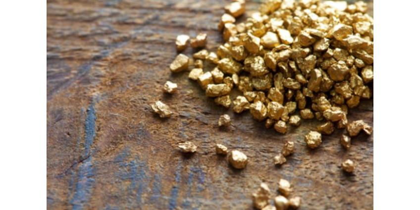 Крупные золотодобывающие компании решили создать в Неваде совместное предприятие