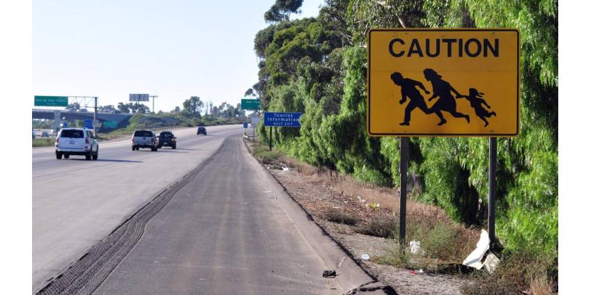 Аризона просит помощи в связи с обилием нелегалов