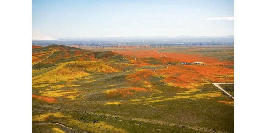НАСА опубликовало снимки Калифорнии в оранжевых цветах