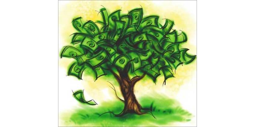 Садите деревья – получайте доходы