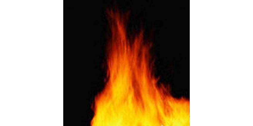 В Калифорнии разбушевался пожар