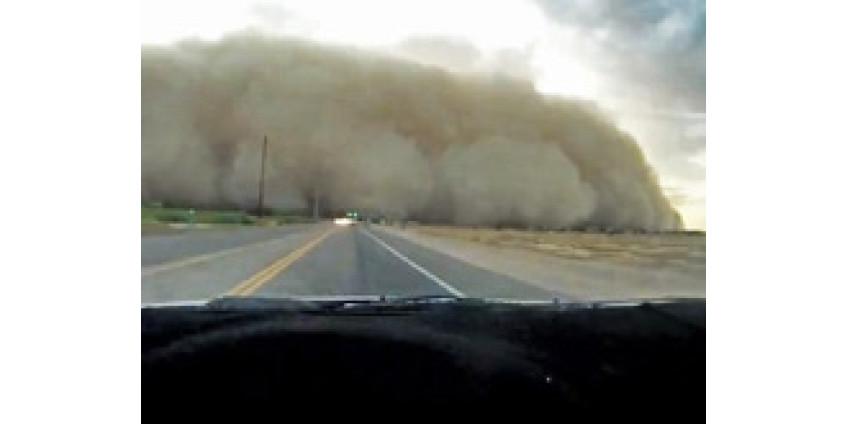 В эпицентре пыльной бури