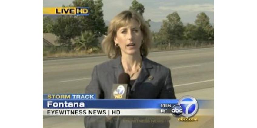 Калифорнийскую корреспондентку обстреляли прямо во время эфира