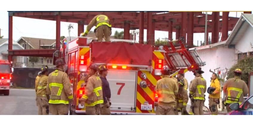 Пожар в Сан-Диего: жертвой оказалась только собака