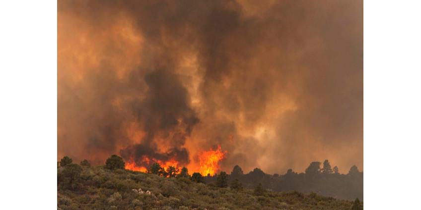 В Аризоне разбушевался крупный пожар