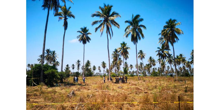 Около 90 тайных захоронений обнаружены на западе Мексики с начала года