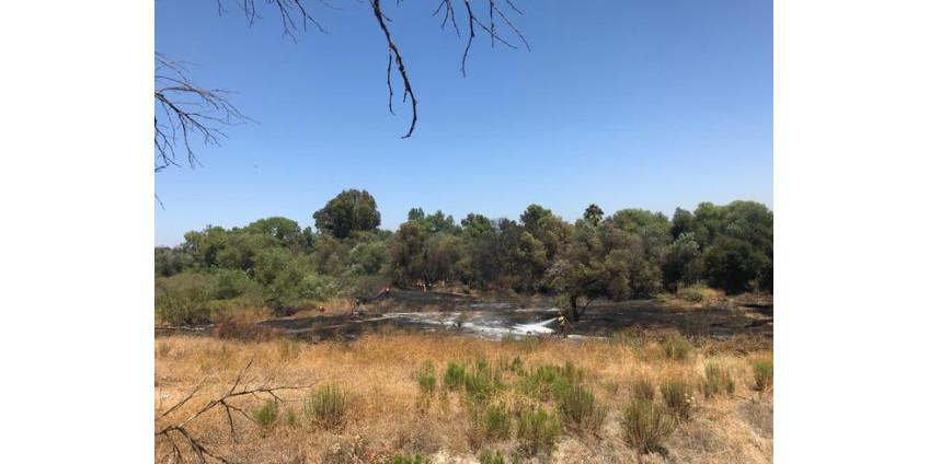 В результате ландшафтного пожара сгорели два акра
