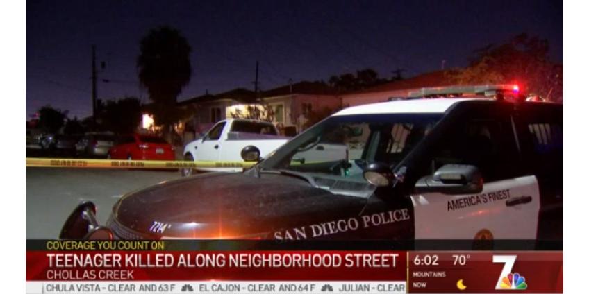 В Сан-Диего в Chollas Creek был убит подросток