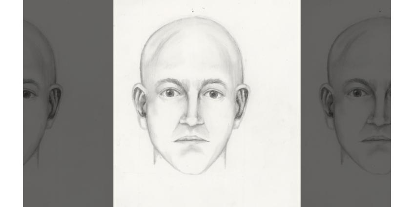 В Чандлере, Аризона, разыскивают мужчину за попытку похищения ребенка