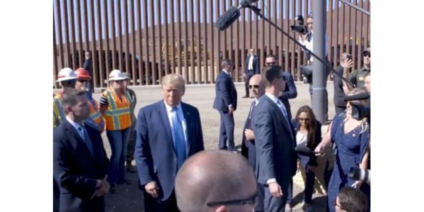 Пограничная стена может навредить кактусам в Аризоне