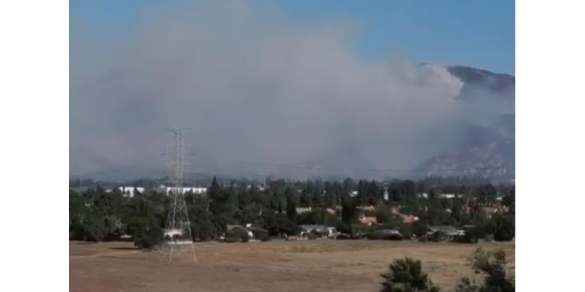 Пожары в Лос-Анджелесе: специалисты установили причину возгорания