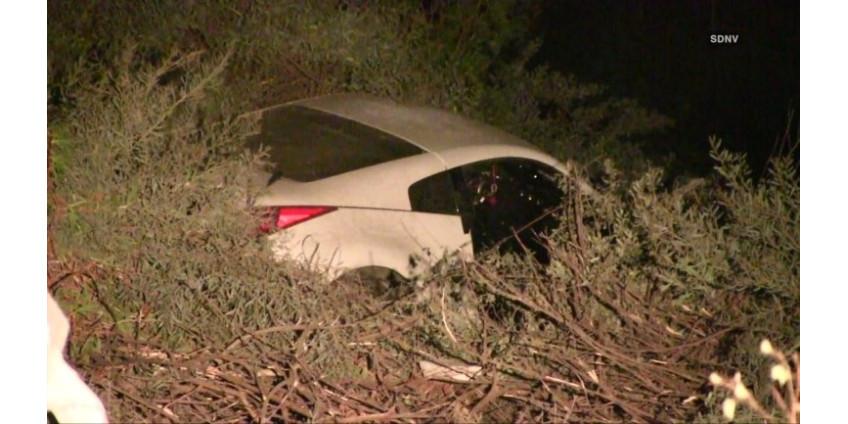 В Сан-Диего на трассе погиб водитель
