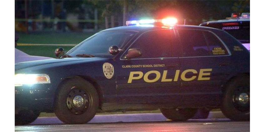 В школе Хендерсона был задержан мальчик с пистолетом