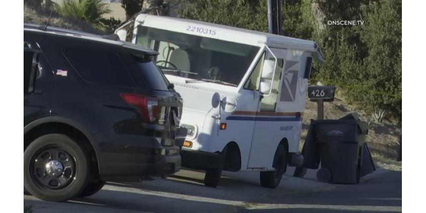 В Сан-Диего был арестован подросток за попытку ограбления и угона