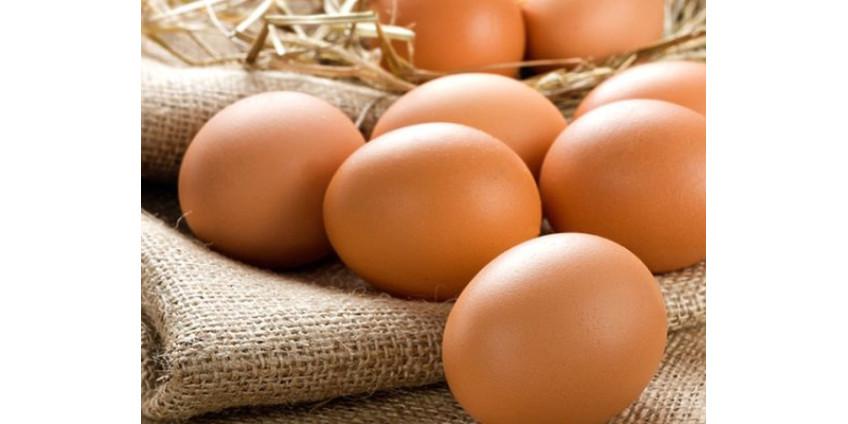 Мужчина упал в обморок и умер после попытки съесть 50 яиц, чтобы выиграть $27 в споре