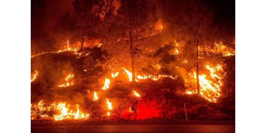 Климатологи высказались об усилении лесных пожаров в Калифорнии