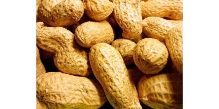 В Калифорнии создали вакцину от аллергии на арахис