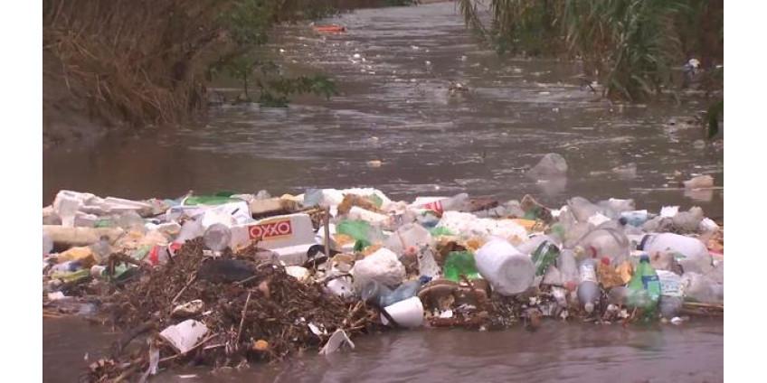 Гостям и жителям Сан-Диего рекомендуют не спешить купаться на пляжах