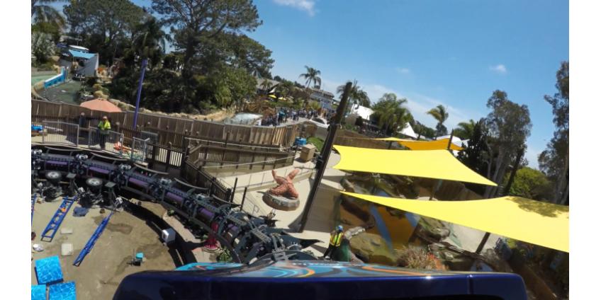 В Сан-Диего более 30 человек застряли на горках в SeaWorld, инцидент завершился без жертв