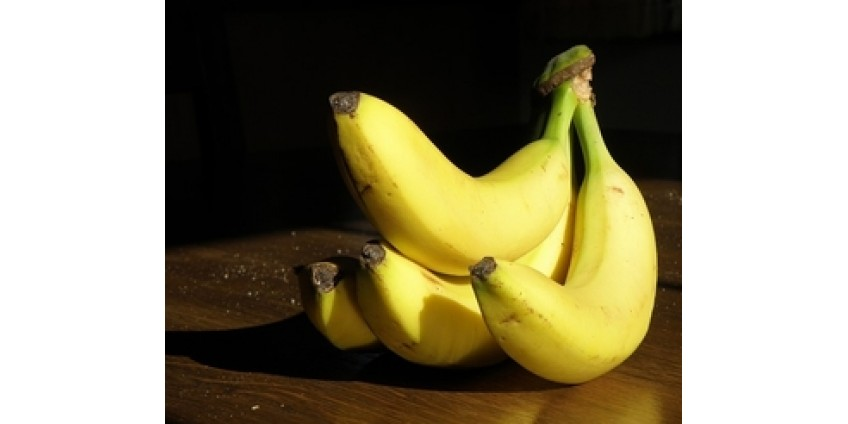Художник продал на выставке в Майами банан, обернутый клейкой лентой, за 120 тысяч долларов