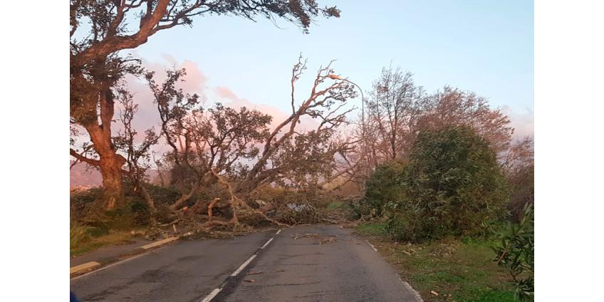 """Во Франции более 20 тыс. домов остались без электричества из-за бури """"Фабьен"""""""