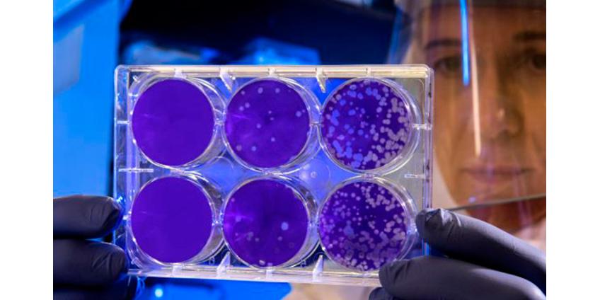 Китайский коронавирус, от которого умерли уже 9 человек, добрался до США