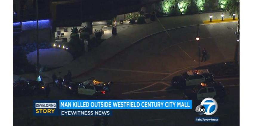 Полиция Лос-Анджелеса сообщила об убийстве мужчины в перестрелке возле торгового центра Westfield Century City