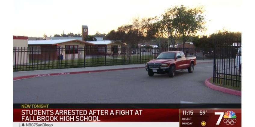 Несколько учащихся средней школы в округе Сан-Диего были арестованы после драки