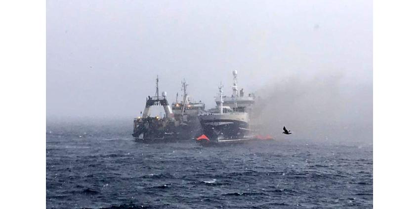 """В Охотском море затонул траулер """"Энигма Астралис"""", горевший четверо суток"""