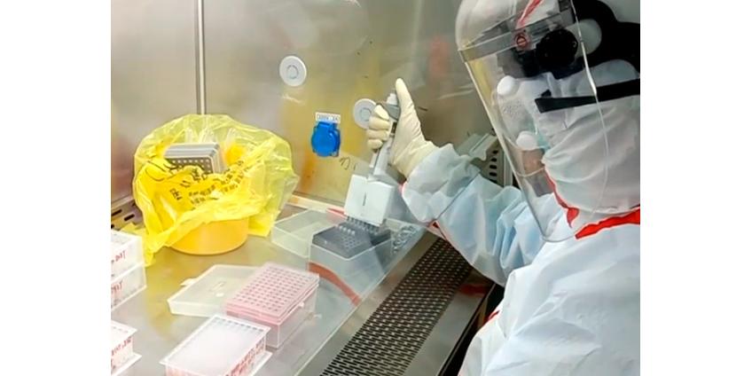 Китайские врачи усомнились в надежности тестов на коронавирус