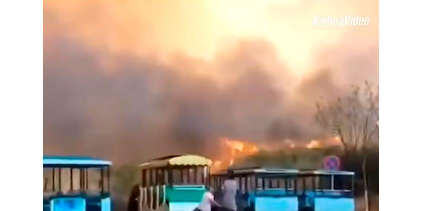 Жертвами лесного пожара на юго-западе Китая стали 19 пожарных