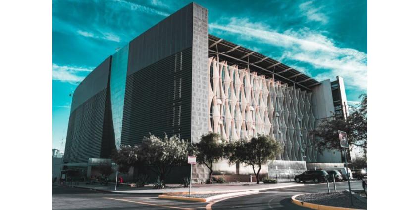 Центральная библиотека Бертона Барра в Финиксе предложила местным жителям онлайн-посещения