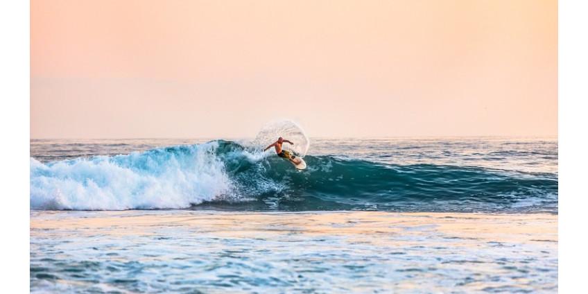 К северу от Сан-Диего на серфингиста напала акула