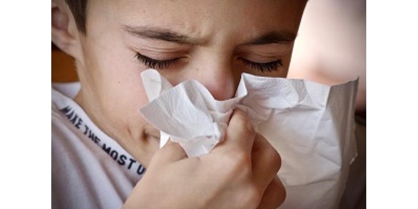 В Китае нашли новый штамм гриппа с потенциалом пандемии