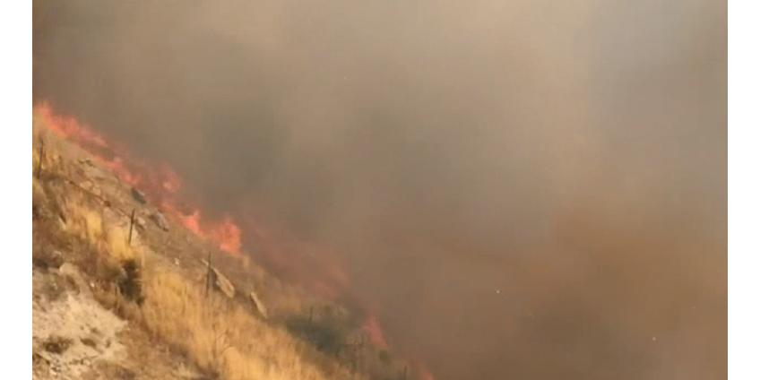 Пожарные сражаются с массовым пожаром в Санта-Кларите, обязательная эвакуация продолжается