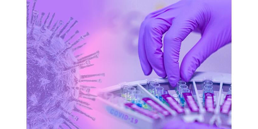 Китайские ученые заявили о возможных сбоях в иммунитете у переболевших коронавирусом