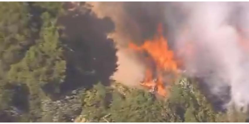 Пожарным удалось потушить ландшафтный пожар, угрожавший домам в Лос-Анджелесе