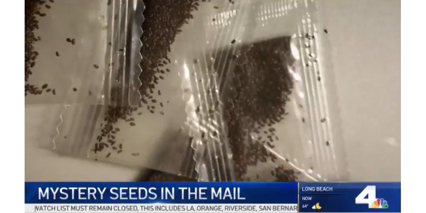 Жителей Лос-Анджелеса предупредили о возможных посылках из Китая с семенами