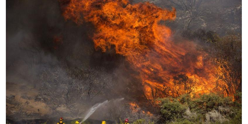 Лесные пожары в Калифорнии не утихают