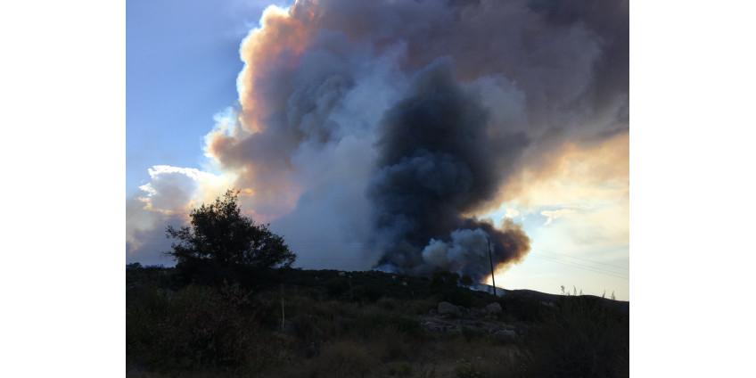 Масштабные пожары в округе Сан-Диего привели к эвакуации жителей