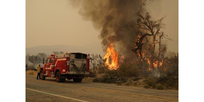 Пожары под Лос-Анджелесом не утихают: часть жителей начали эвакуировать