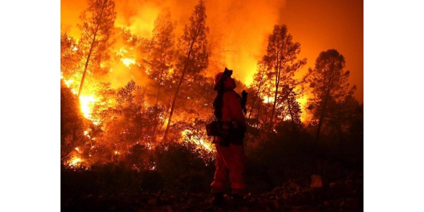 Из-за лесных пожаров в Калифорнии эвакуируют 60 тысяч человек