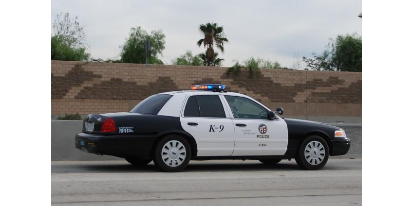 В Лос-Анджелесе были задержаны более 40 человек