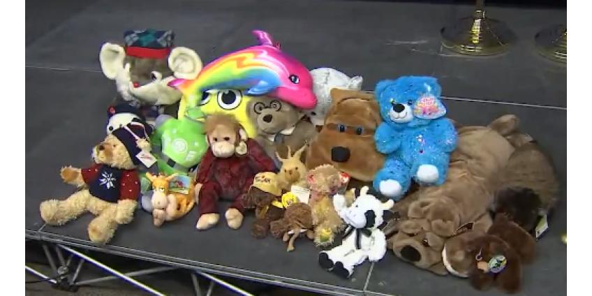 6-летняя девочка пожертвовала игрушки полиции Финикса для детей, оказавшихся в сложной ситуации