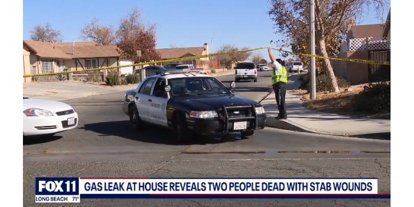 В округе Лос-Анджелес были найдены двое подростков с ножевыми ранениями