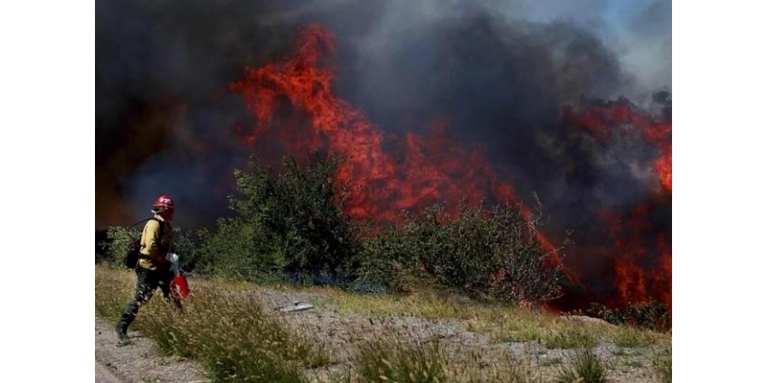 Ветры Санта-Аны повышают риск возникновения лесных пожаров в округе Сан-Диего