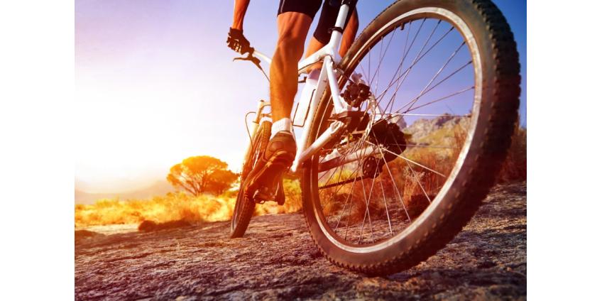 Более 1000 велосипедистов со всего мира приняли участие в виртуальной поездке в память о жертвах аварии в Лас-Вегасе
