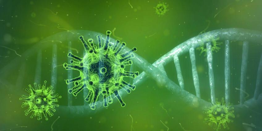 Коронавирус в Сан-Диего: 4478 положительных тестов COVID-19, 58 новых смертей